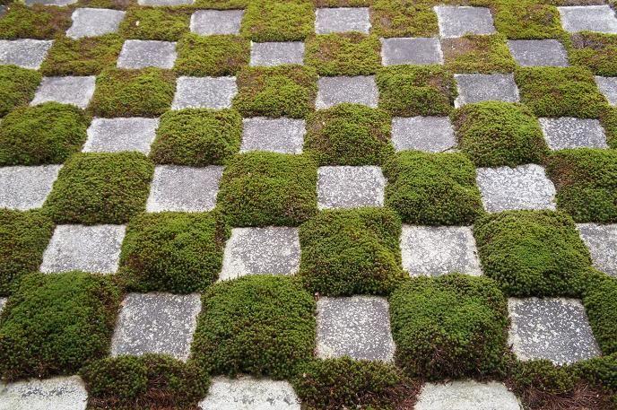まるで現代アート!?東福寺「方丈庭園」