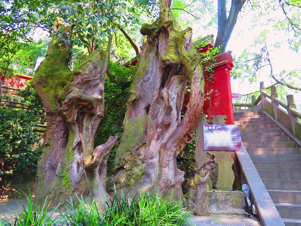 「伏龍観」の近くの見落とされがちな「商木」