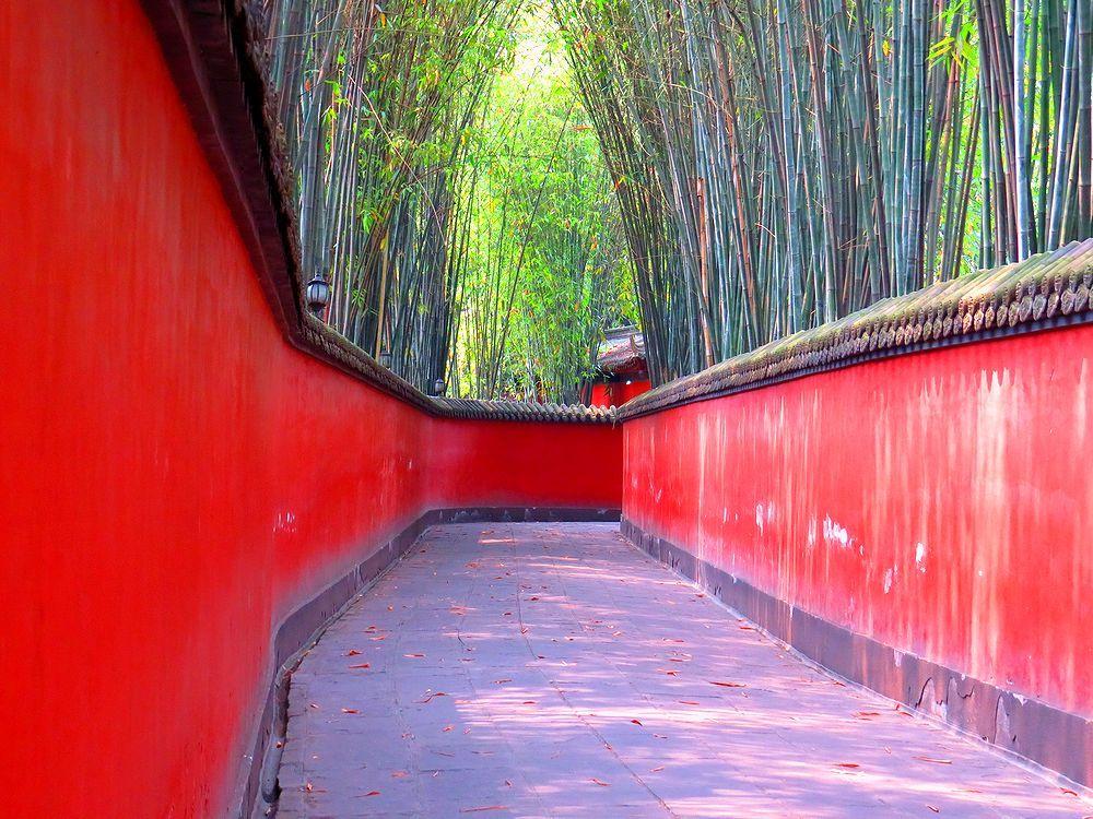 恵陵の奥にある美しき竹道