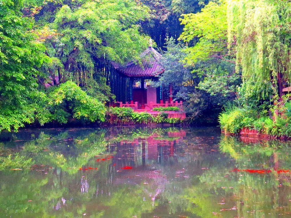 美しき竹林「望江楼公園」