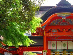 大分・宇佐神宮は全八幡宮の総本宮!緑豊かなパワースポット