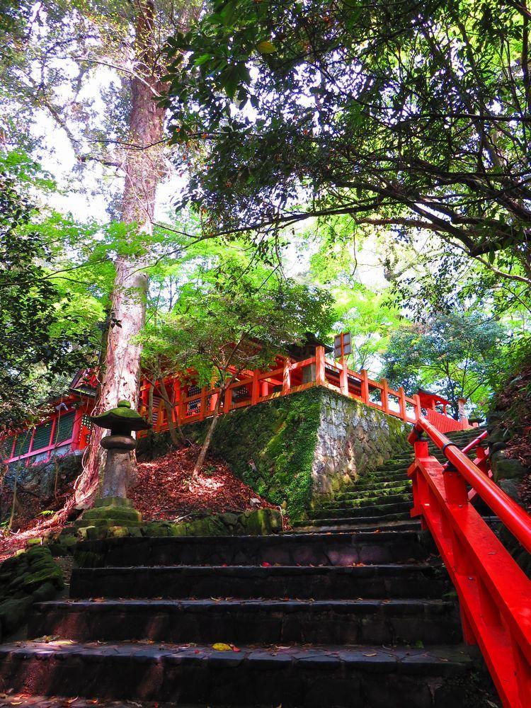 「百段」の辺りは豊かな自然