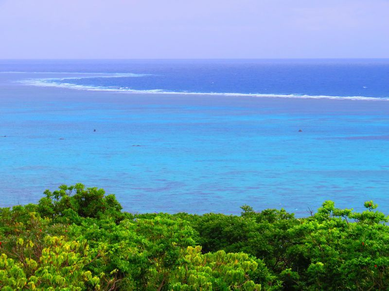 石垣島の大自然観光5選!青い海やヤシ群、鍾乳洞は必見