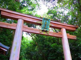 奈良で訪れたいおすすめ神社10選 世界遺産や人気のパワスポも