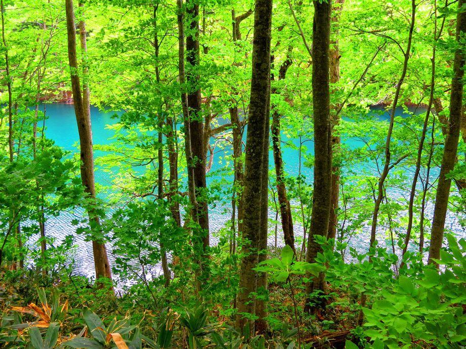 上から見下ろす長沼と正面の長沼