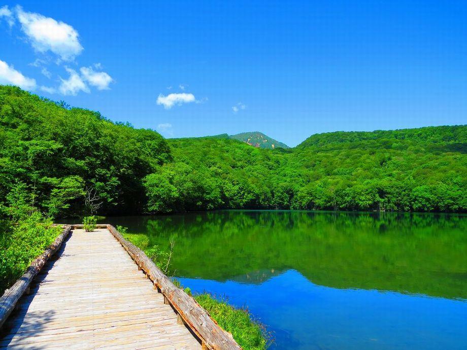青森観光「蔦散策」で、春夏の濃厚な青と緑の撮影スポット