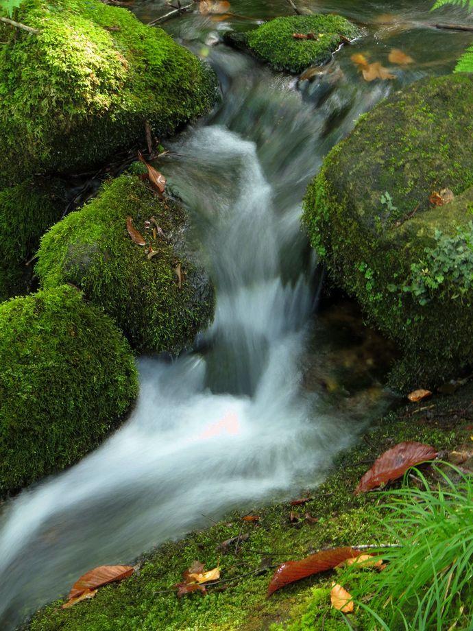 癒される水の流れ