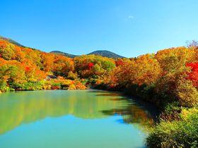 美しすぎる紅葉の八甲田観光!訪ねておきたい睡蓮沼と地獄沼