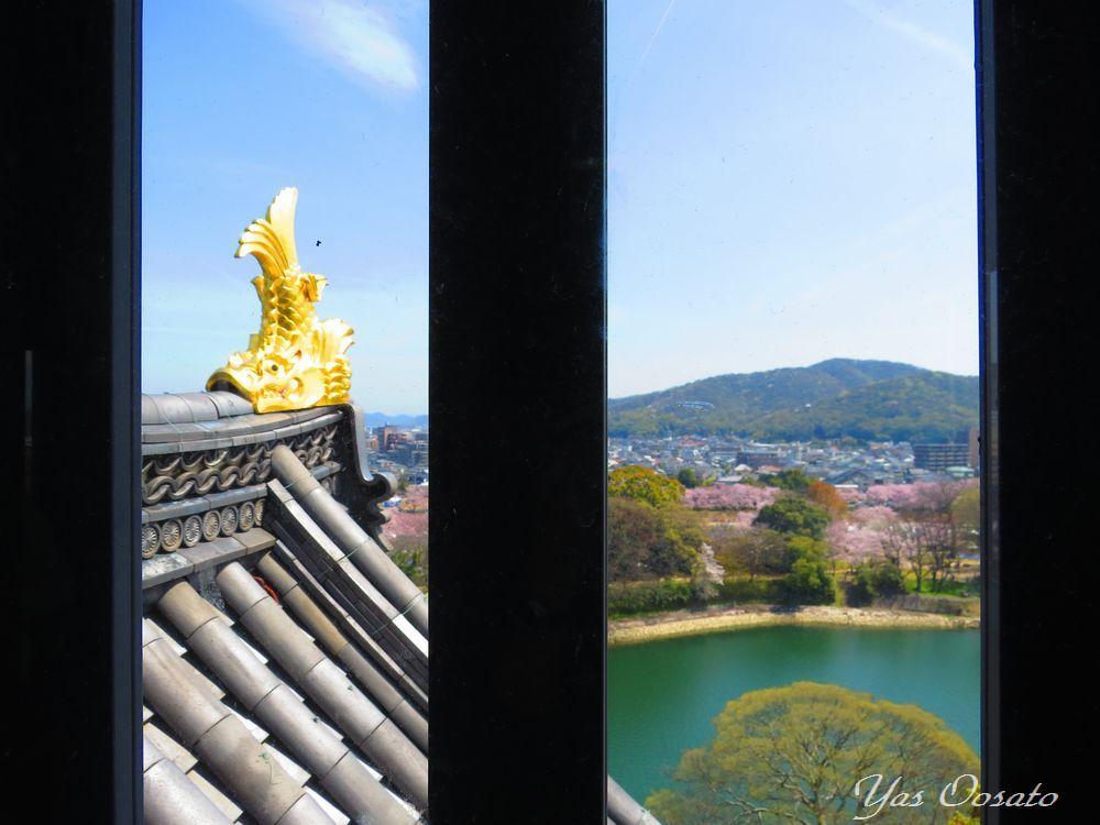 岡山城とは