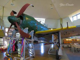 日本に唯一現存する戦闘機「紫電改」は愛媛県愛南町にあり