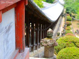 岡山・吉備津神社は桃太郎の地!長い回廊とあじさいの美は必見