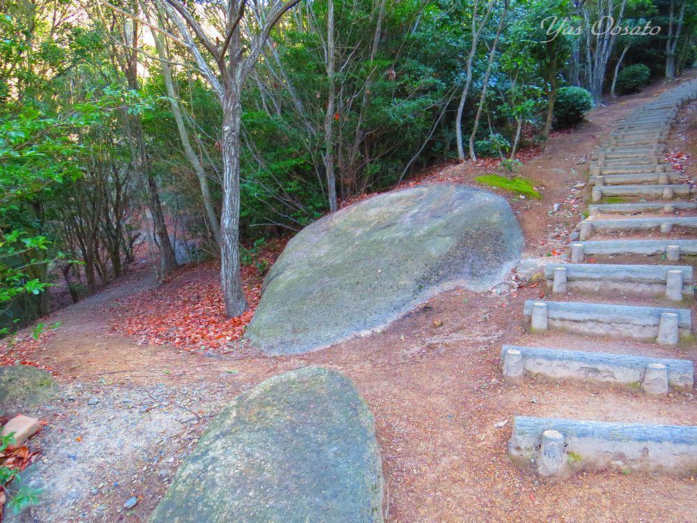 王子が岳のお手軽なミニ登山道