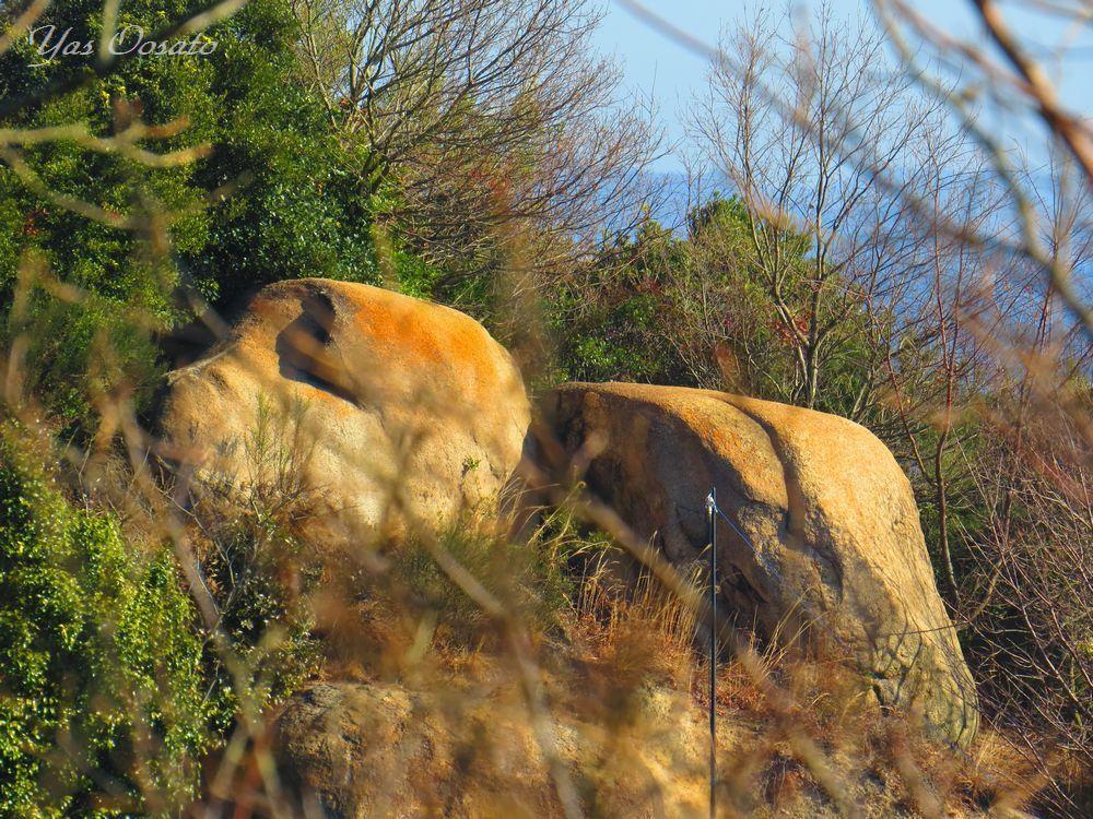 かわいい犬の岩。そして下山道を見つけよう