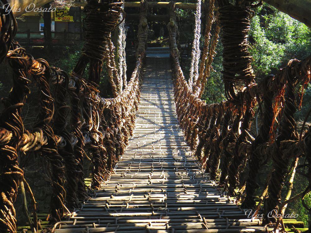 橋を渡ってみよう