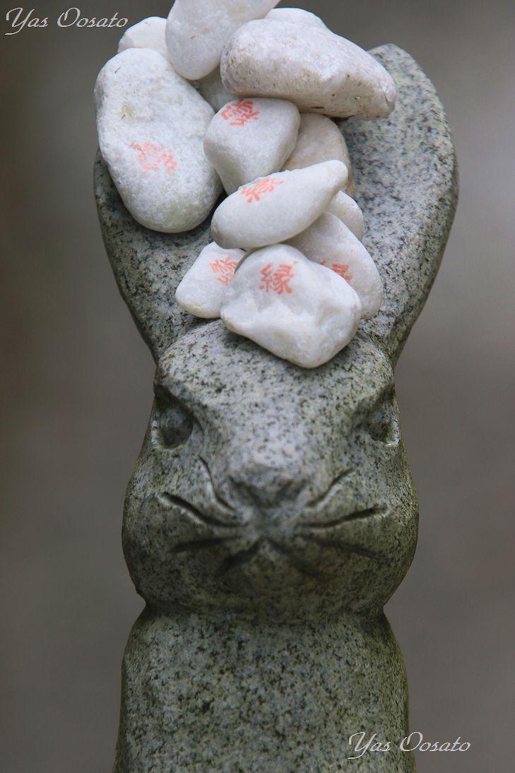 因幡の白兎とは