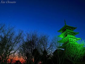 岡山総社・備中国分寺で楽しむ菜の花、夕陽、ライトアップ