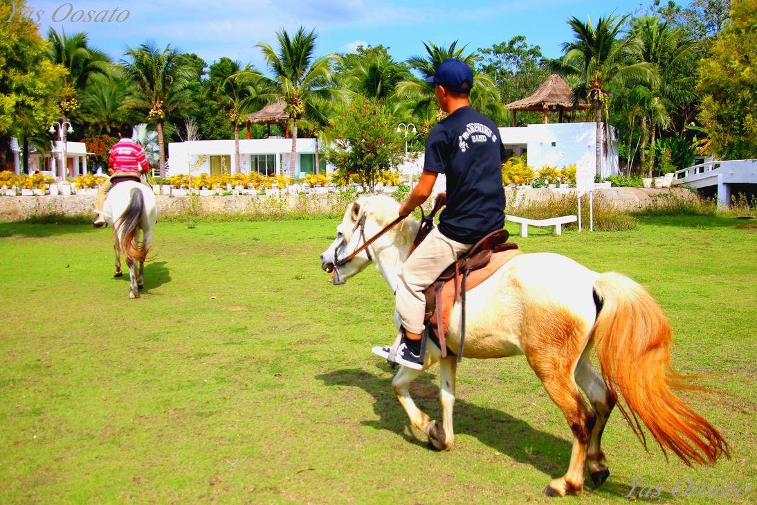 格安の乗馬体験