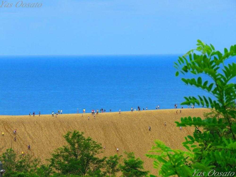 陸路でも意外と近かった「鳥取砂丘」