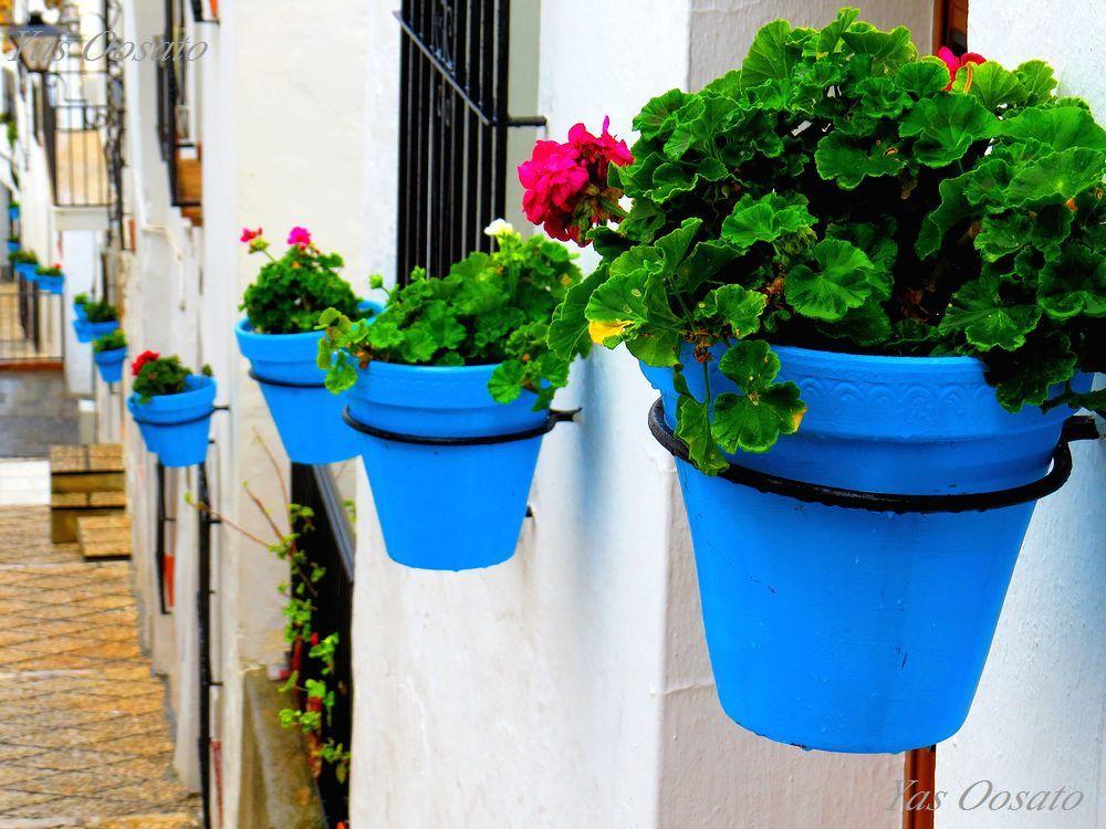 スペイン・アンダルシアのミハスは全てが白壁!彩多き地中海の村