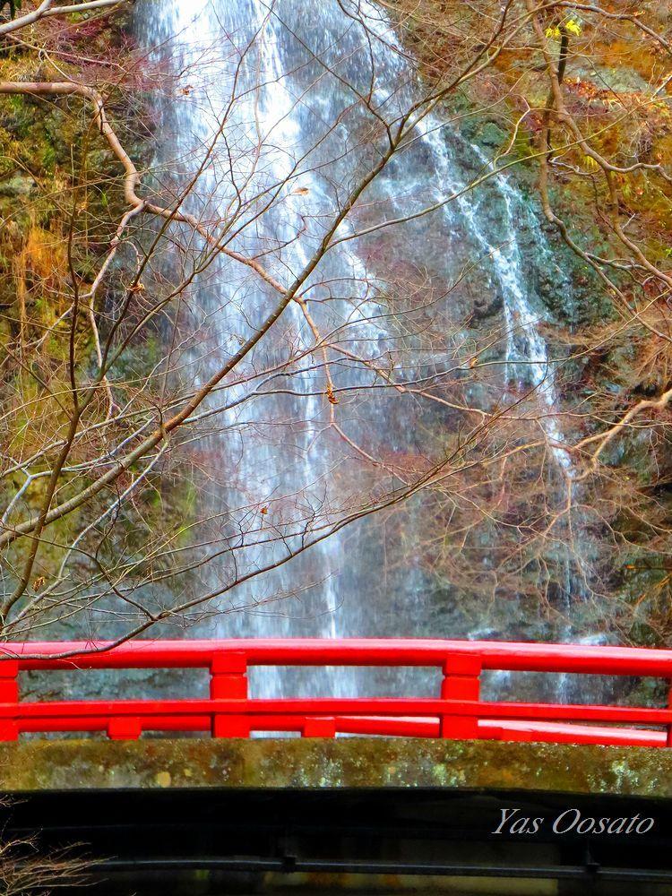 魅力ある箕面の滝