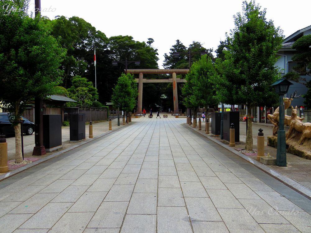 鹿島神宮への道