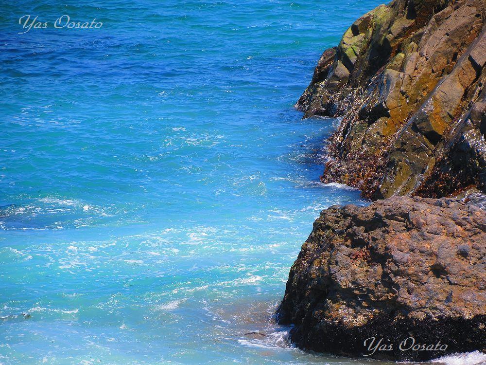 太平洋の青い魅力と葦毛崎展望台
