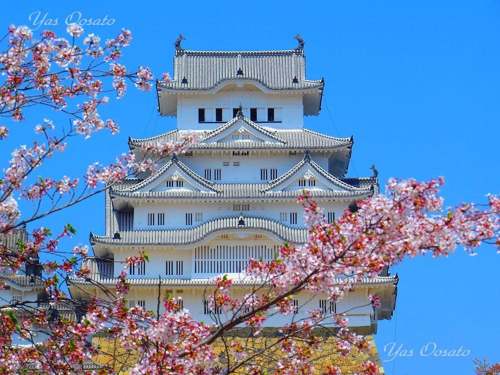 姫路城入場
