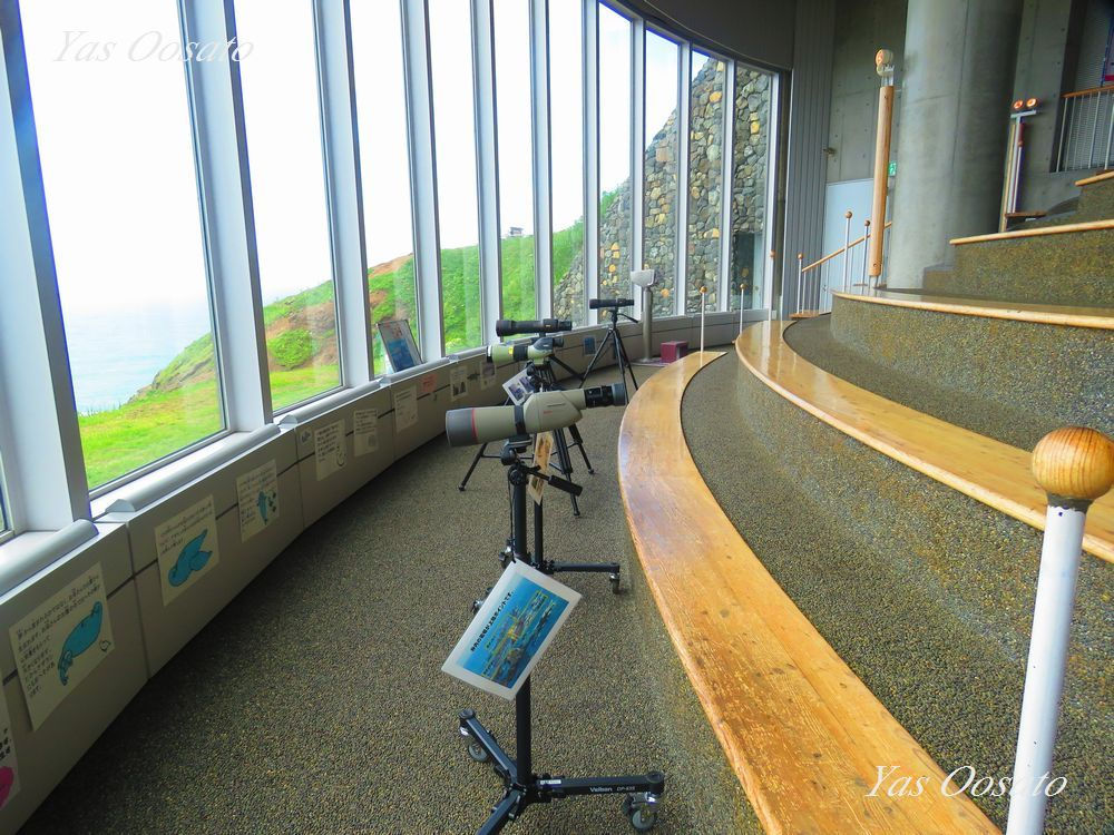 風の館で望遠鏡によるゼニガタアザラシ観察とえりも風体験