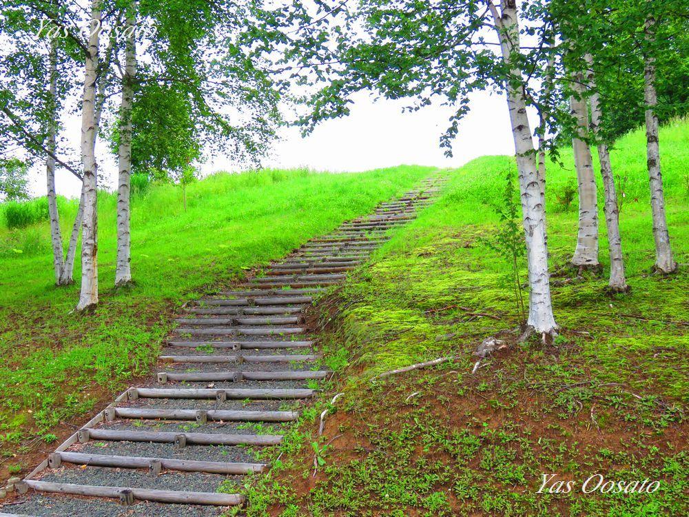 四季の交流館で裏の丘からの絶景