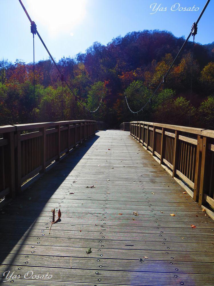 9.蔦川出合い橋