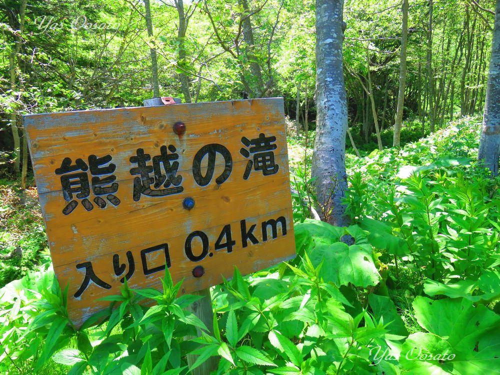入口から「熊越の滝」まで約400m