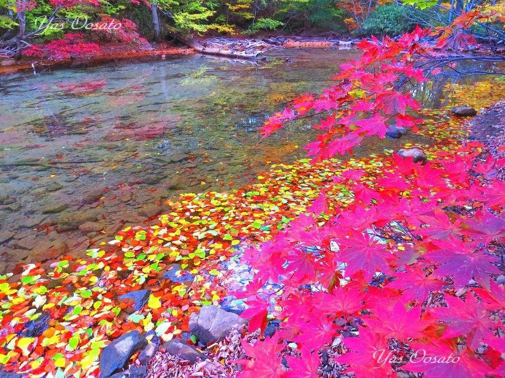 絶景の赤沼と赤い世界