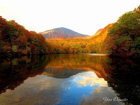 青森十和田の秘境・蔦七沼の一つ「赤沼」で桁違いの紅葉を