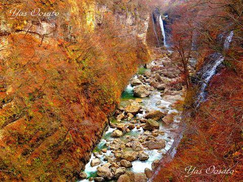 98度の大噴湯!秋田の紅葉観光は「小安峡」散策と足湯
