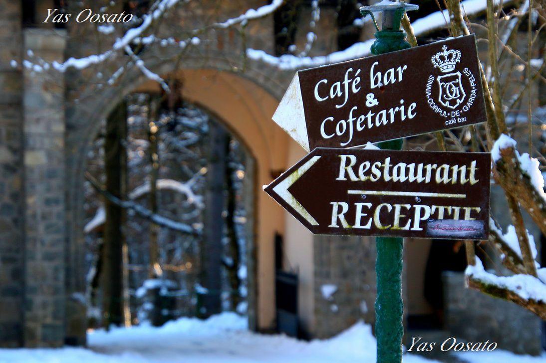 長い坂道を下り、カフェがあるエリアへ
