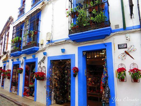 「花の都」スペインのコルドバを歩こう