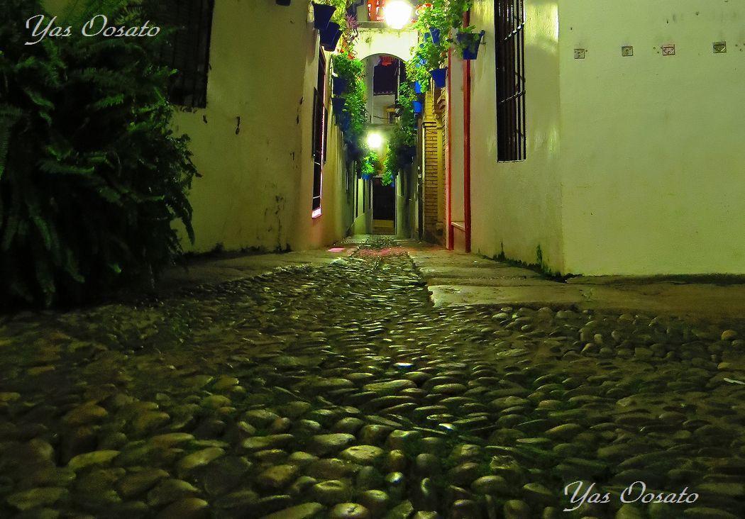 カジュハ・デ・ラス・フローレス小路で「ミナレット」