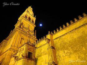 夜が美しい世界遺産メスキータ!スペイン・コルドバ観光