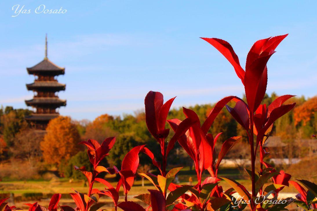 岡山総社観光は備中国分寺へ!紅葉の五重塔と周辺散策