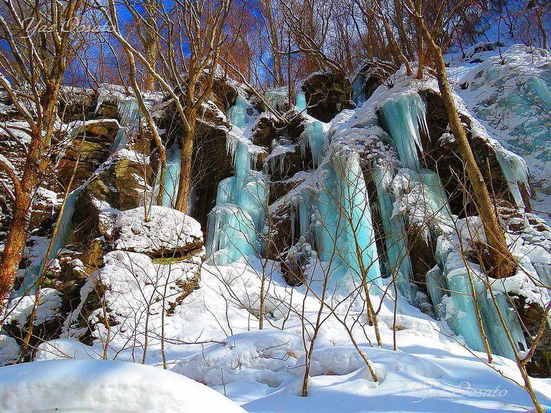 冬の十和田奥入瀬渓流で青い光!雲井、銚子大滝で氷の迫力も楽しもう