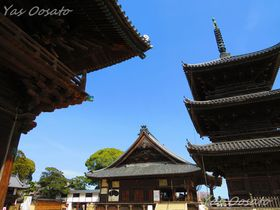 見どころ多数!日本三大奇祭「岡山・西大寺」を散策しよう
