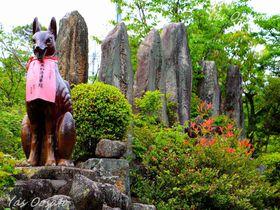 岡山・最上稲荷は日本三大稲荷の一つ!目指せ八畳岩と奥の院