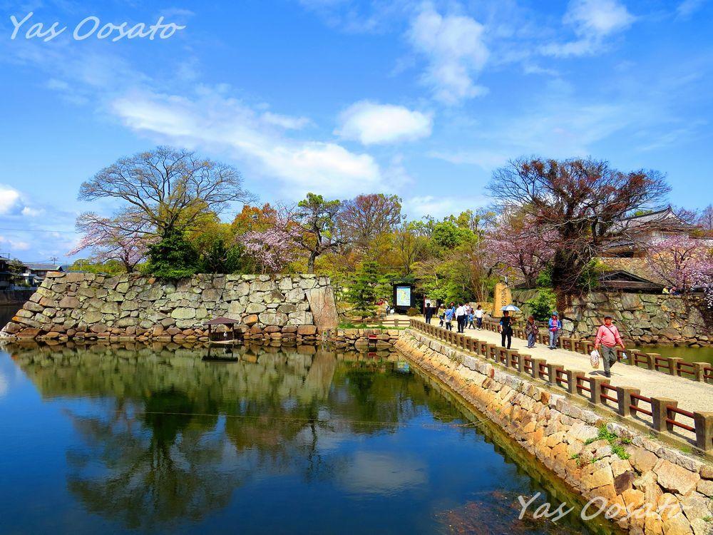 濠から既に美しい名城「岡山城」