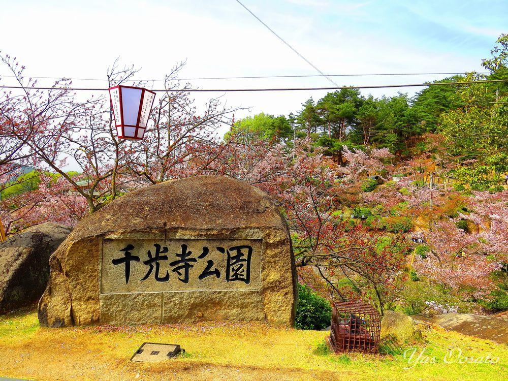 山頂「千光寺公園」からの眺め