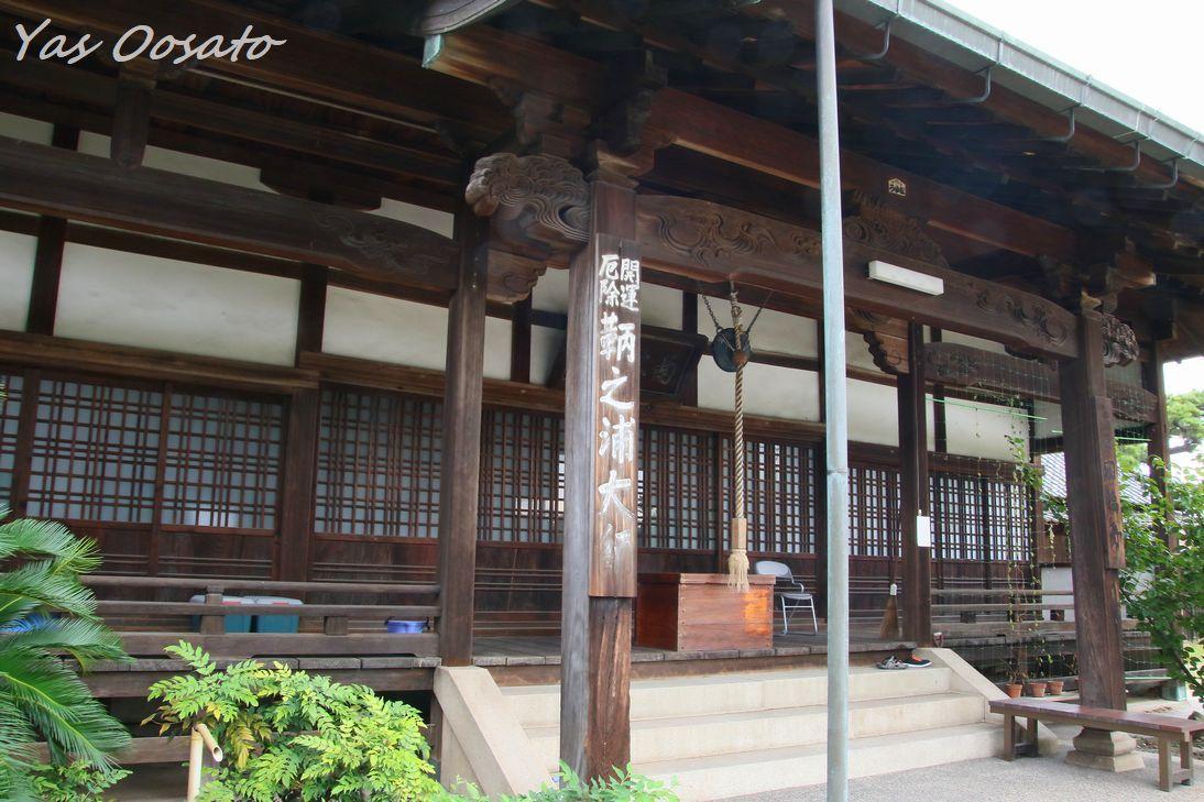 歴史ある円福寺と猫