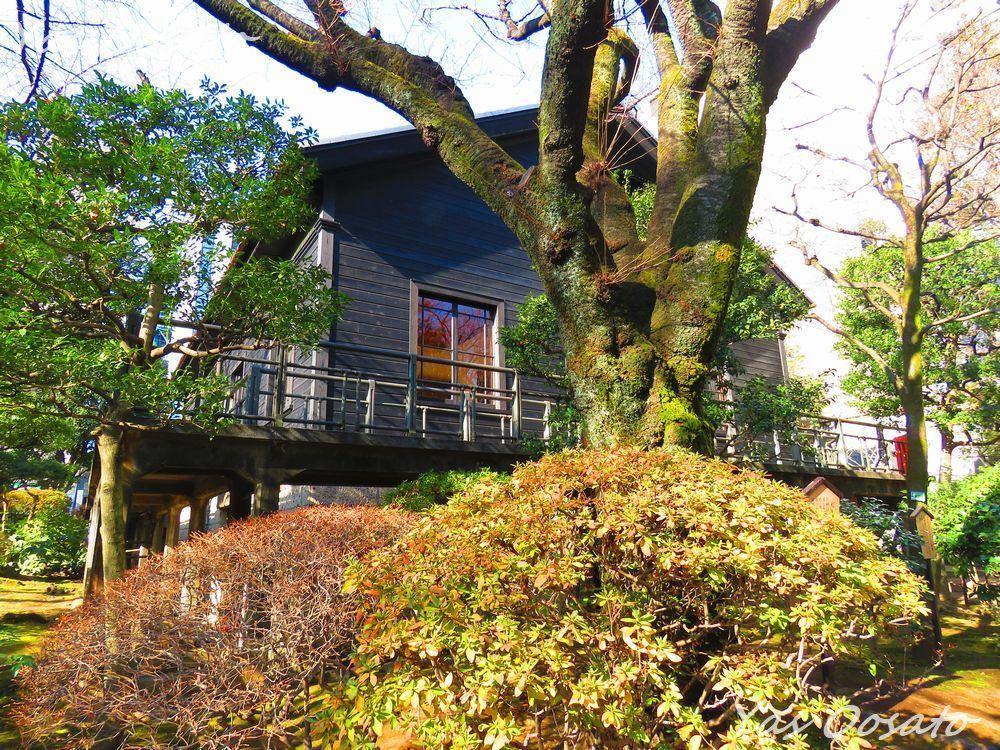旧邸宅裏側にある小さな祖霊社