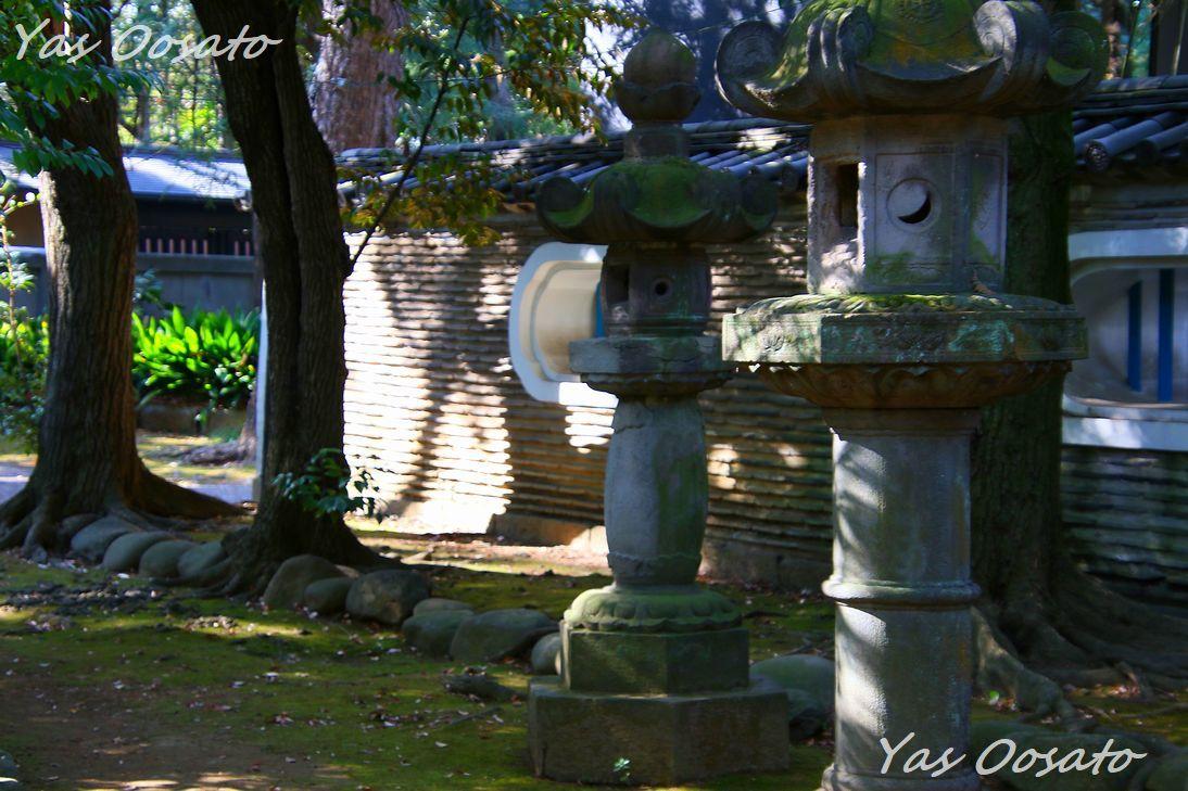 見どころが多い境内で江戸時代の雰囲気と大イチョウ