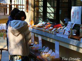 その歴史一千年!赤坂氷川神社で厄除、良縁、家内安全、商売繁盛
