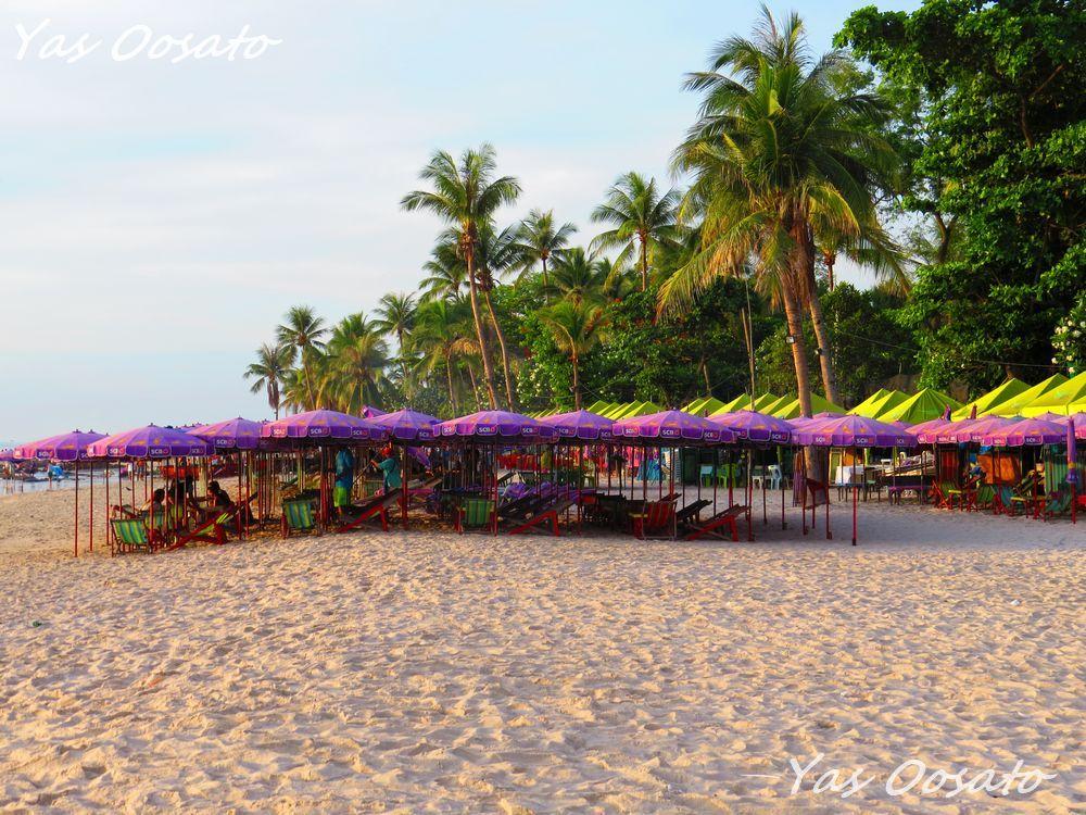 朝のビーチの魅力