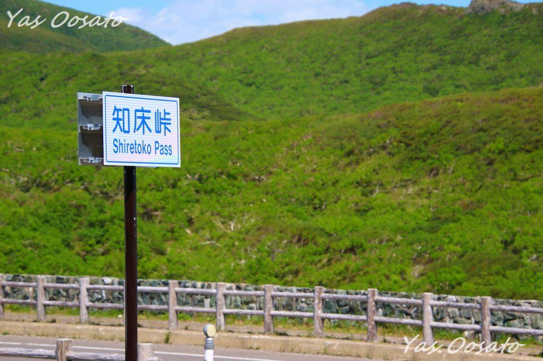 知床峠の広い駐車場とバス停